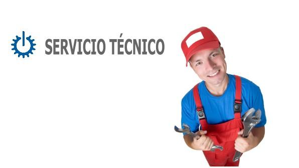 tecnico Fagor Ibi